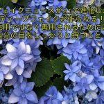 フェイクニュースの事例で池上彰が解説。立川志らくに注目!