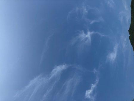 仙酔島 空
