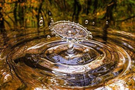 水 波動 水素水