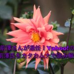 ZOZOの前澤友作氏が退任!ヤフーの傘下に。前澤友作氏をカタカムナで読み解く