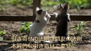 引き寄せの法則は類友の法則 本質的な引き寄せで幸せに