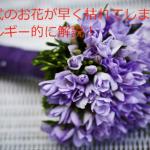 結婚式のお花が早く枯れてしまう理由を解説!